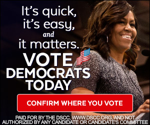 Preview static image for dscc-FLOTUS-ev-300x250