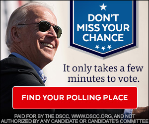 Preview static image for dscc-biden-300x250
